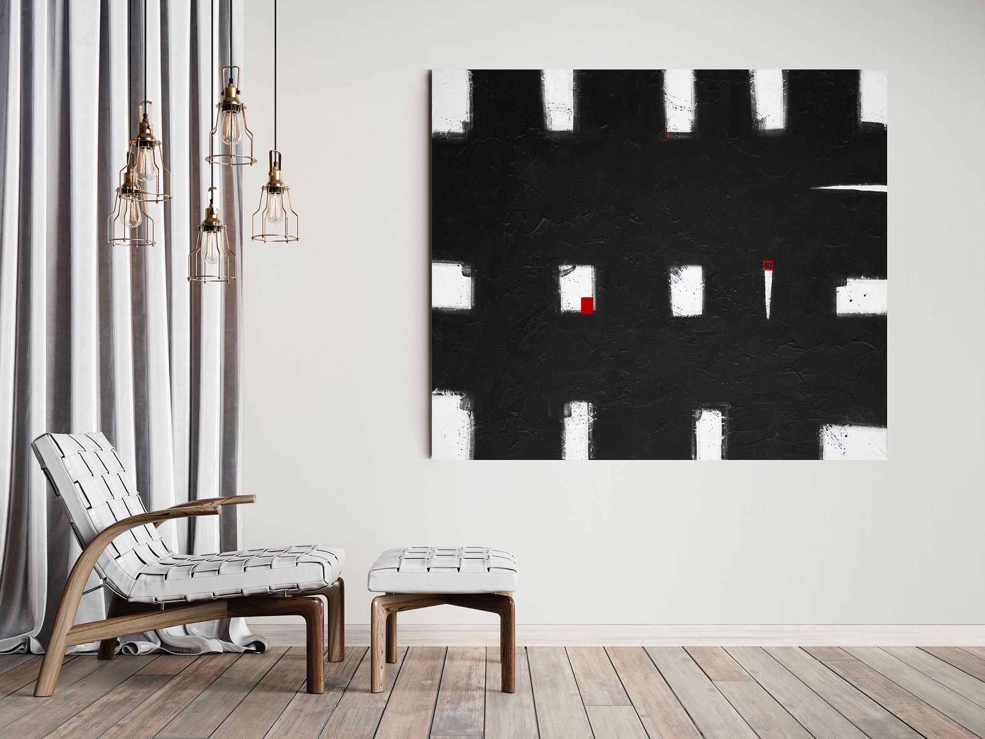black-white-belted-bella-galloway-in-situ